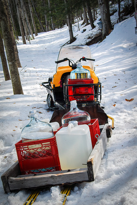 Hauling Maple Sap by Snowmobile
